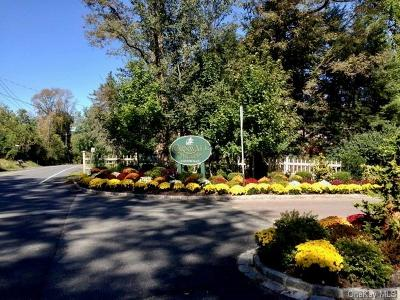 Putnam County Condo/Townhouse For Sale: 404 Cornwall Meadows Lane