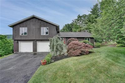 Dutchess County Single Family Home For Sale: 3 White Pine Lane