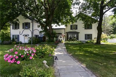 Dutchess County Single Family Home For Sale: 2327 Salt Point Turnpike