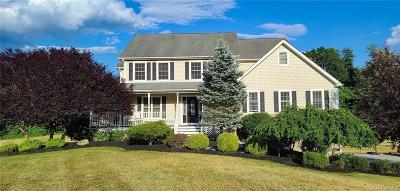 Dutchess County Single Family Home For Sale: 37 Whites Corner Lane