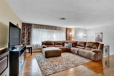 Dutchess County Single Family Home For Sale: 11 Namoth Road