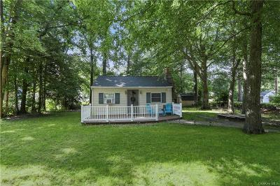 Putnam County Single Family Home For Sale: 28 Newton Road