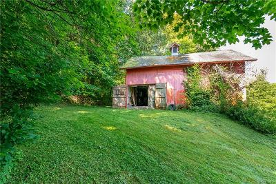 Putnam County Single Family Home For Sale: 37 Route 164