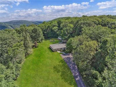 Putnam County Single Family Home For Sale: 90 Scout Hill Road