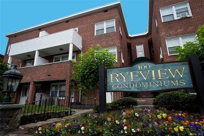 Westchester County Condo/Townhouse For Sale: 100 Theodore Fremd Avenue #A2A