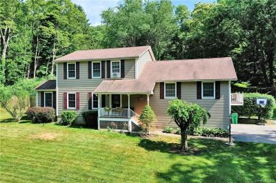 Dutchess County Single Family Home For Sale: 25 Miller Hill Road
