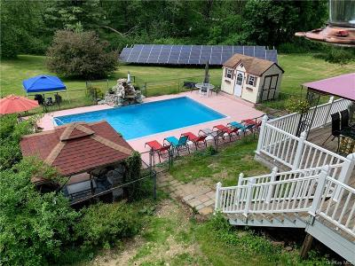 Dutchess County Single Family Home For Sale: 2429 Route 82