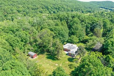 Dutchess County Single Family Home For Sale: 125 McCarthy Road