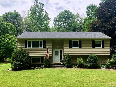 Putnam County Single Family Home For Sale: 289 Gage Road