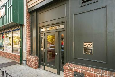 Westchester County Condo/Townhouse For Sale: 543 Main Street #204