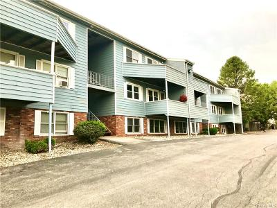 Dutchess County Condo/Townhouse For Sale: 216 W Road H-78