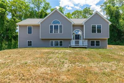 Dutchess County Single Family Home For Sale: 678 Plass Road
