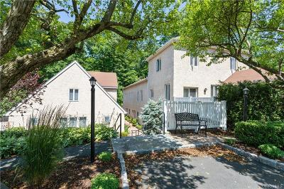 Westchester County Condo/Townhouse For Sale: 65 Dale Avenue #A3