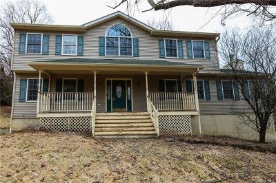 Dutchess County Single Family Home For Sale: 140 Stormville Mountain Road