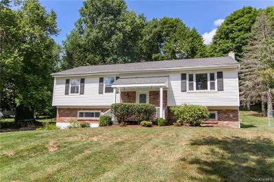 Dutchess County Single Family Home For Sale: 3 Johnson Road
