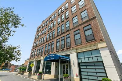 Westchester County Condo/Townhouse For Sale: 25 Leroy Place #PH15