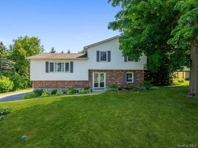 Dutchess County Single Family Home For Sale: 21 Glenwood Road