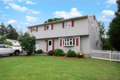 Dutchess County Single Family Home For Sale: 3 Fern Lane