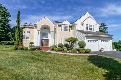 Dutchess County Single Family Home For Sale: 16 White Birch Way