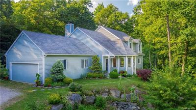 Dutchess County Single Family Home For Sale: 2157 Route 292