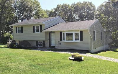 Dutchess County Single Family Home For Sale: 106 Beaver Road