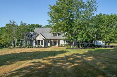 Dutchess County Single Family Home For Sale: 58 Pond Hills Ct
