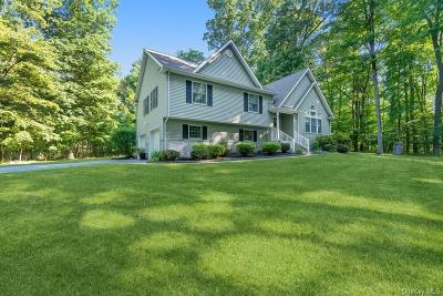 Dutchess County Single Family Home For Sale: 311 Myers Corners Road