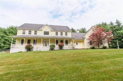 Dutchess County Single Family Home For Sale: 37 Buck Drive