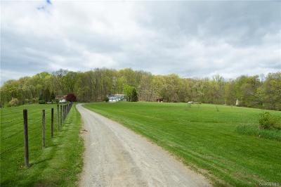 Dutchess County Single Family Home For Sale: 210 Stowe Drive