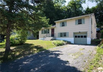 Dutchess County Single Family Home For Sale: 20 Essex Road