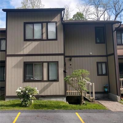 Dutchess County Condo/Townhouse For Sale: 1402 Chelsea Cv