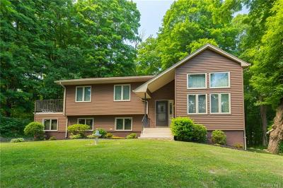 Dutchess County Single Family Home For Sale: 15 Nathan Hale Drive