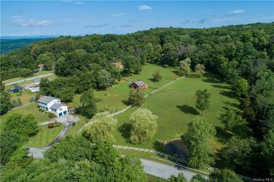 Dutchess County Single Family Home For Sale: 19 Washburn Road