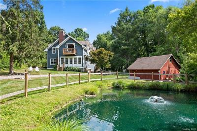 Dutchess County Single Family Home For Sale: 132 Barmore Road