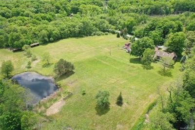 Dutchess County Single Family Home For Sale: 291 E Fallkill Road