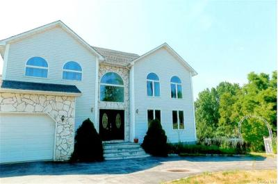 Dutchess County Single Family Home For Sale: 21 Hart Drive