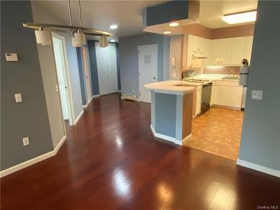 Westchester County Rental For Rent: 21 Lake Street #2F