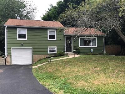 Dutchess County Single Family Home For Sale: 12 Claudia Lane