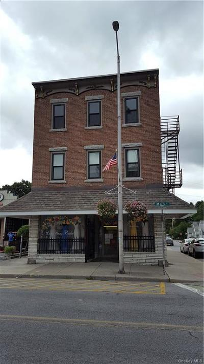 Dutchess County Rental For Rent: 274 Main Street