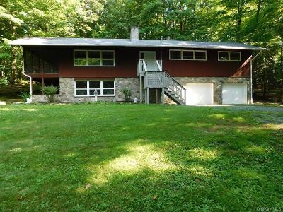 Dutchess County Single Family Home For Sale: 58 Gretna Woods Road