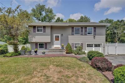 Dutchess County Single Family Home For Sale: 91 Salem Road