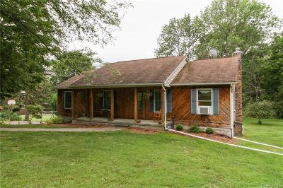 Dutchess County Single Family Home For Sale: 29 Lakeview Drive