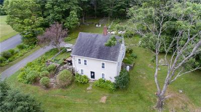 Putnam County Single Family Home For Sale: 618 Milltown Road