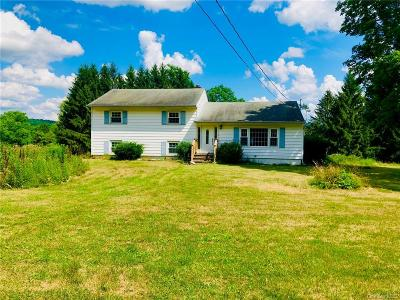 Dutchess County Single Family Home For Sale: 150 Verbank Village Road