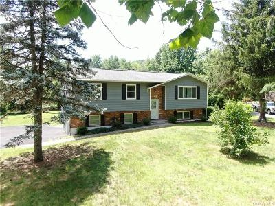 Dutchess County Single Family Home For Sale: 20 Old Grange Road