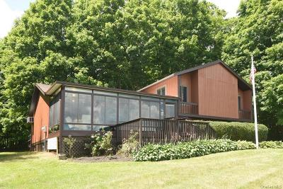 Putnam County Single Family Home For Sale: 1 Juniper Circle