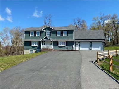Dutchess County Single Family Home For Sale: 225 Bedford Lane