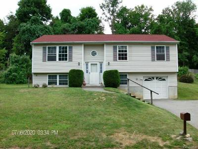 Dutchess County Single Family Home For Sale: 55 Holly Hill Drive