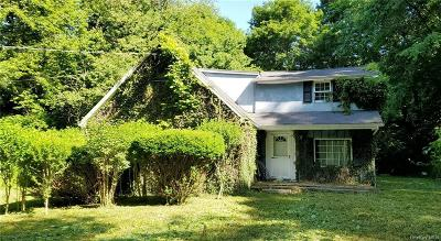 Putnam County Single Family Home For Sale: 20 Shore Drive
