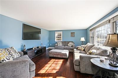 Dutchess County Single Family Home For Sale: 24 Kent Road